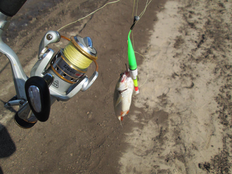 рыбалка летом осенью весной