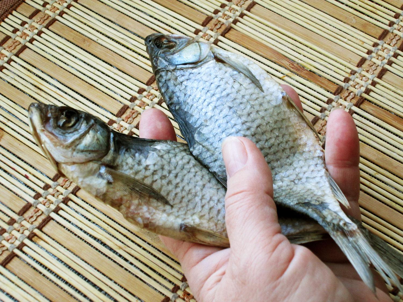 Как завялить рыбу в домашних условиях без мух